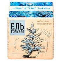 Набор для выращивания «Экокуб. Ель голубая»