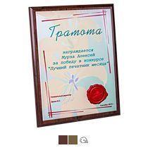 Наградные дипломы (плакетки)