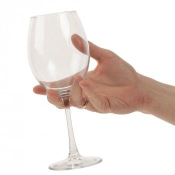 Бокал для вина «Энотека», в руке