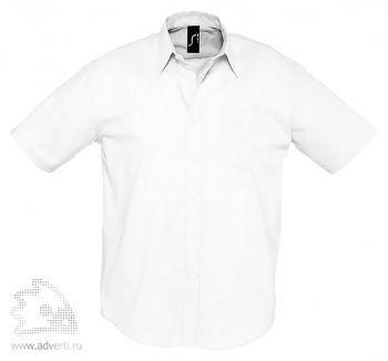 Рубашка «Brisbane 135», мужская, белая