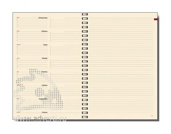 Внутренний блок еженедельников недатированных А6 (97х164 мм)