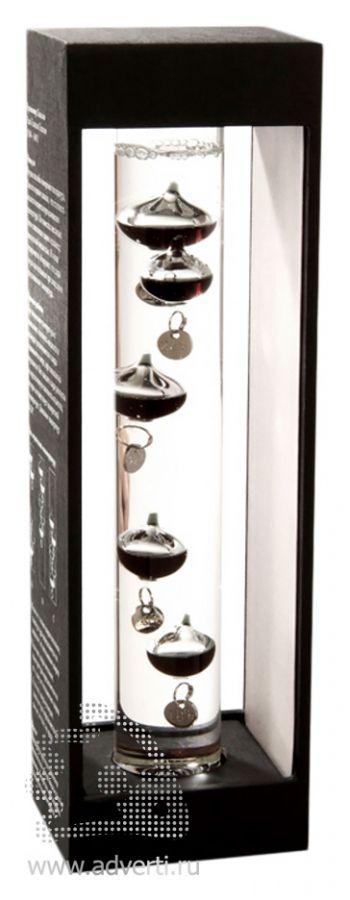 Термометр «Галилео Галилей». общий вид