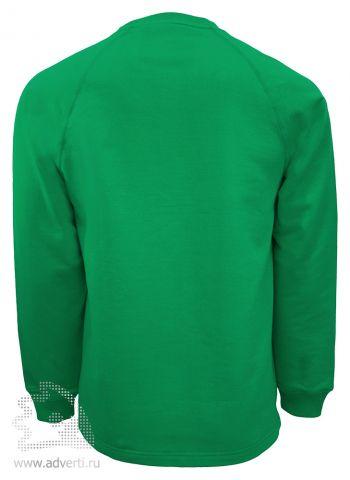 Толстовка «Stan Work», мужская, зеленая, спина