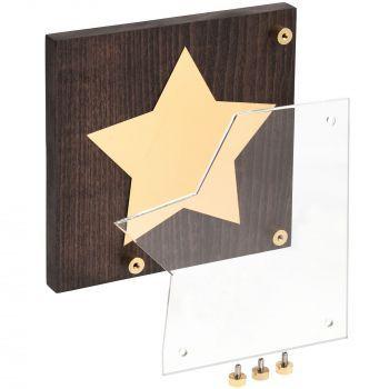 Награда «Asteri», золотистая, в разобранном виде