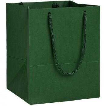 Пакет бумажный «Ample S», зелёный