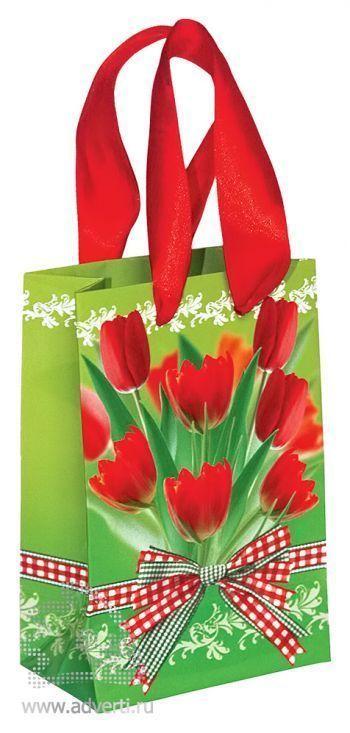 Пакет «Тюльпаны»
