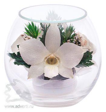 Композиция из белых орхидей