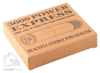 Универсальный внешний аккумулятор «Power Express» 3000, упаковка