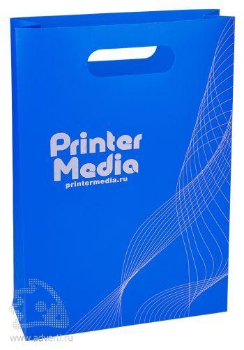 Пластиковый пакет с вырубной ручкой, вертикальный